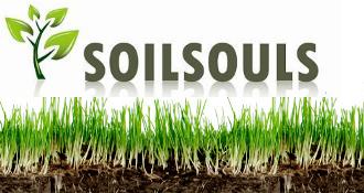 Soilsouls (Juta Cilliers)