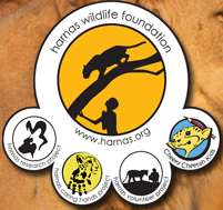 Harnas Wildlife Foundation