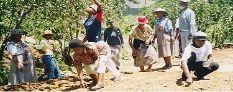 Kopano ke Matla Toantsong ea Bofuma Lesotho Network