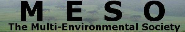 Multi-Environmental Society 'MESO'