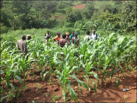 Sustainable Rural Community Development Organisation