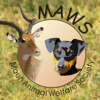 Maun Animal Welfare Society