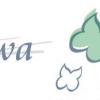 Satemwa Tea Estates